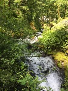 Waterfall Hike 4